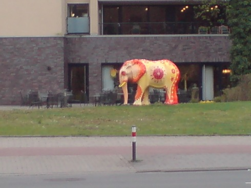 Überall Elefanten im Hamm